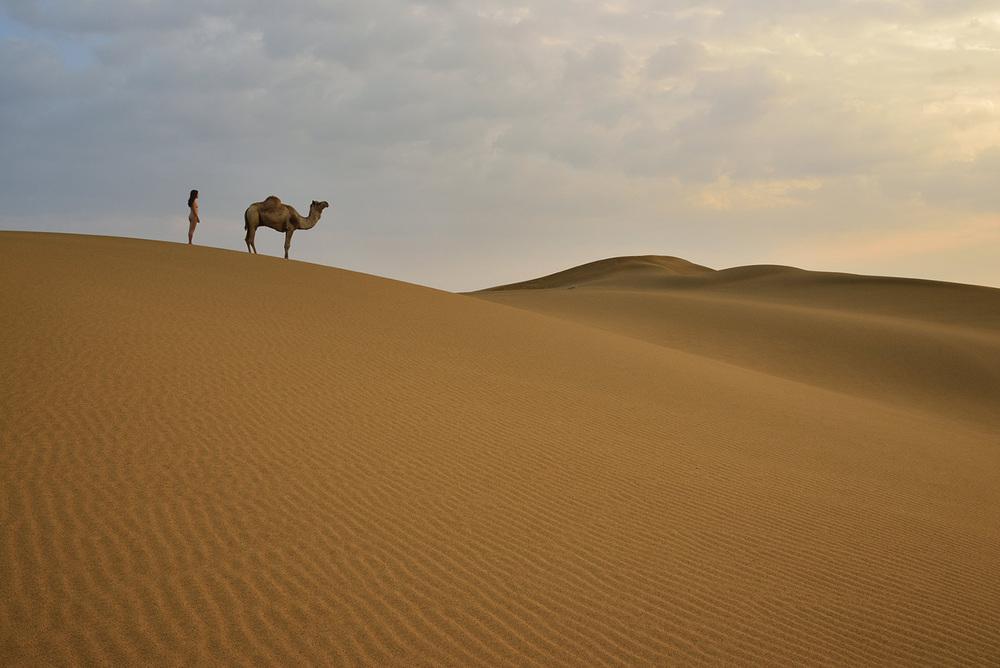 Siyala Dunes, <br>India, Thar Desert 2