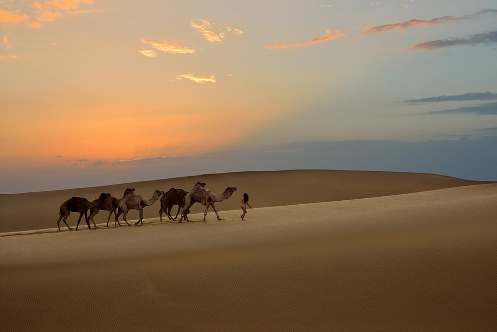 Siyala Dunes, <br>India, Thar Desert 6