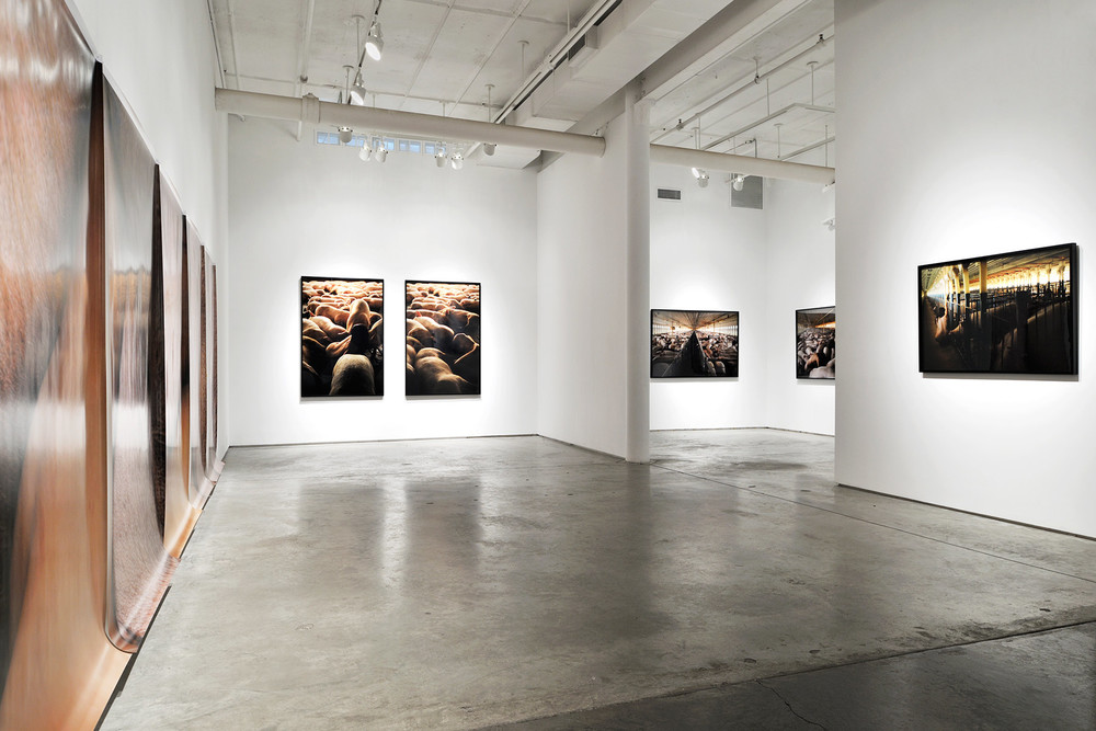 Doosan Gallery <br>New York, NY