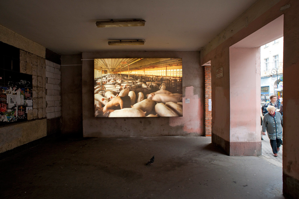Łódź Biennale, <br>Łódź, Poland