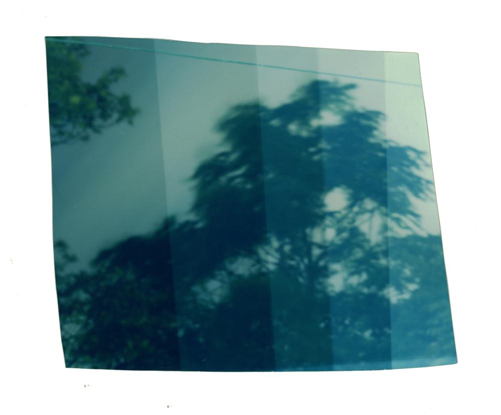 October_2014012.jpg