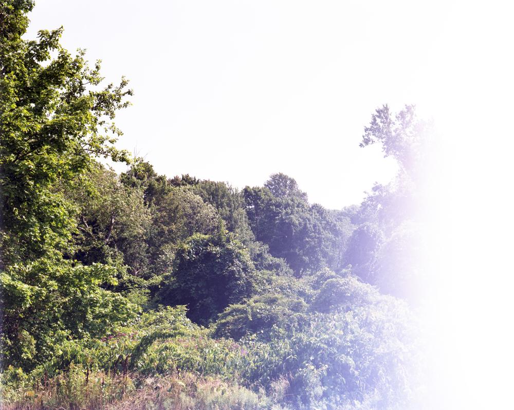 Gloucester_July_2010.jpg