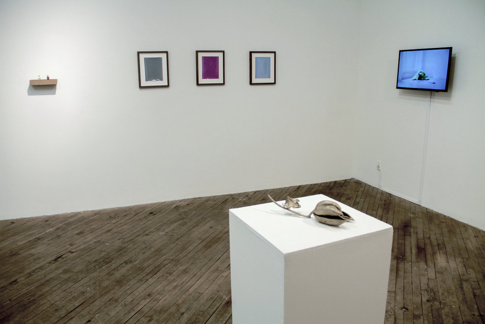 Imperceptibly and Slowly Opening  exhibition at Vox Populi in Philadelphia, 2016.