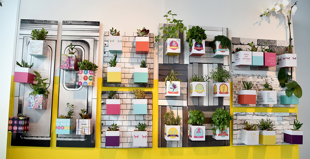 This is a wall installation that I designed and made. The background pieces are Shutterfly's metal wall art printed with NYC images. Each of the boxes you see are Shutterfly's photo cubes turned upside down to act as succulent pots. The idea was you could have a garden inside the tiniest NYC apartment by making your own wall art garden at home. Some of the cubes have sayings prints and some have silly sayings that my hubby and I made up.