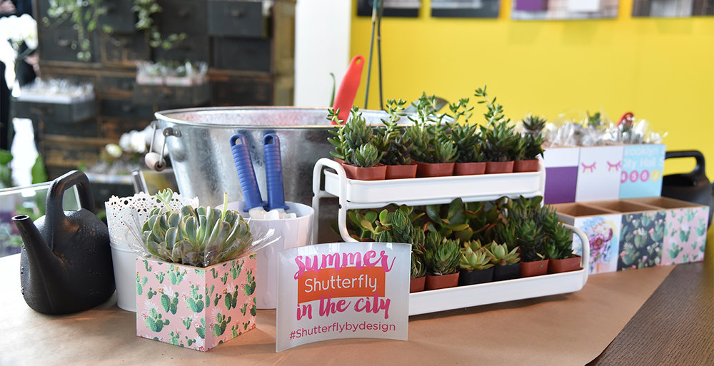 Each editor and blogger who came through got to make their own take home succulent photo cube.