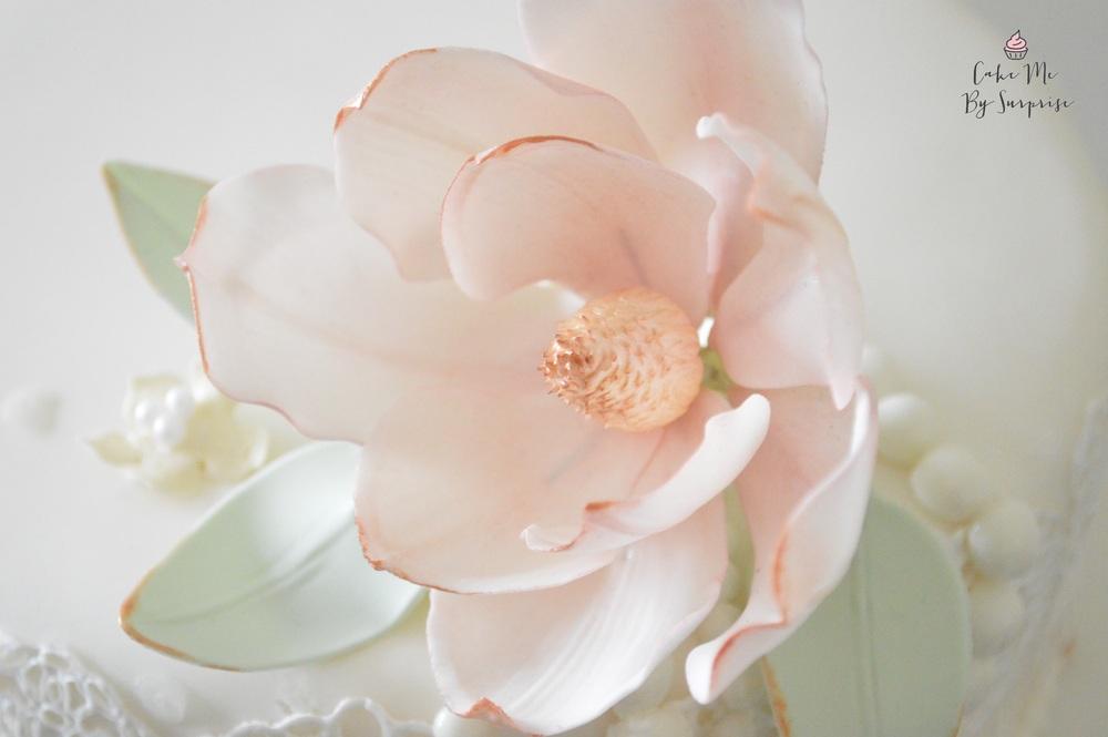 vintage sugar magnolia