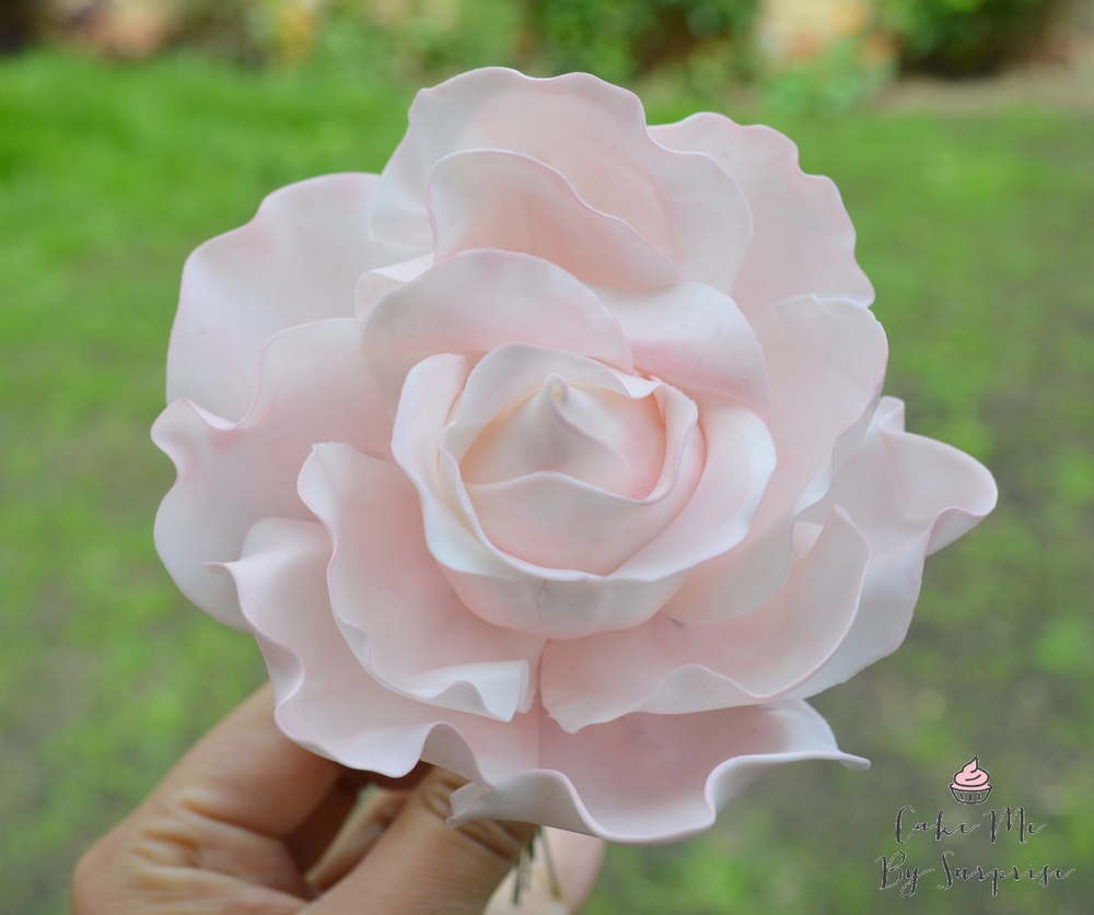 Sugar rose angel pink oversized