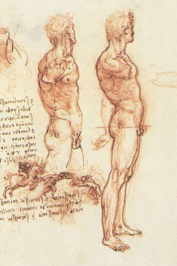 Leonardo da Vinci  Figure DRawing