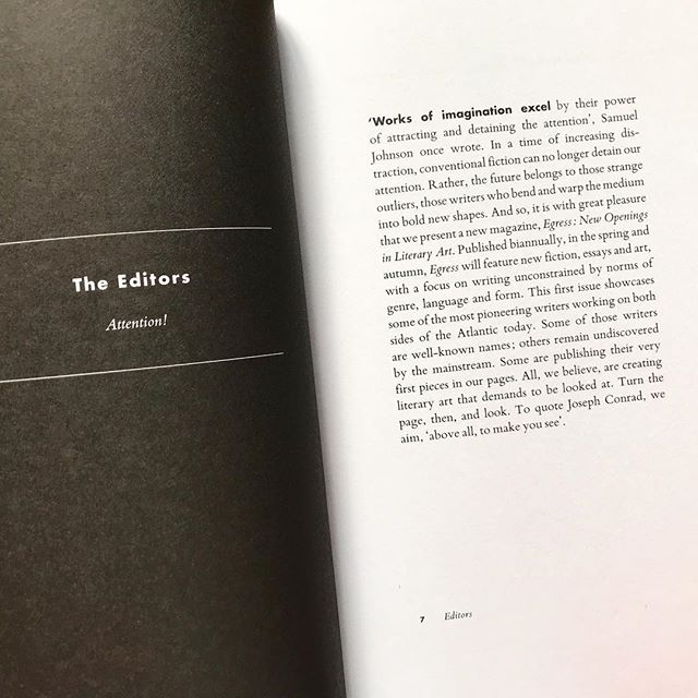 """Our primary role is to discover and promote new writers. Often unpublished, unagented, and lacking industry connections, these writers reside at the margins. But we believe in them, fervently, and we believe they deserve to be heard."" The editors of @egressmagazine discuss the impetus behind setting up the magazine, literary communities and the art of the ugly-beautiful sentence over @biblioklept_ (link in bio)  #egressmagazine #egressmag #littleislandpress #interview #editing #litmag #bookstagram #biblioklept #davidwinters"