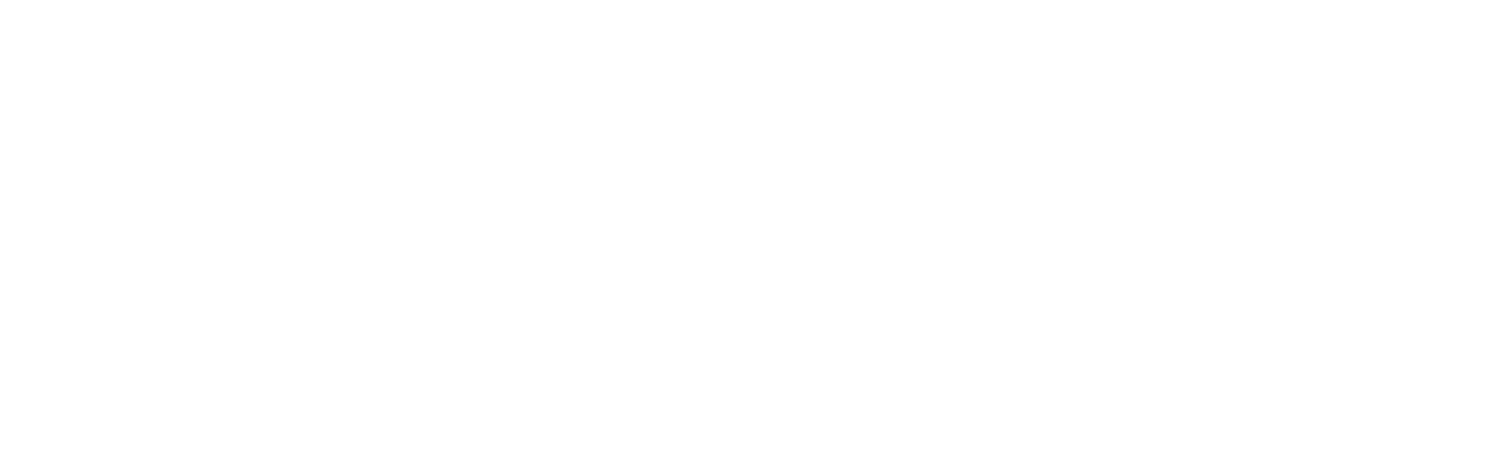 Educator Voice Strategies