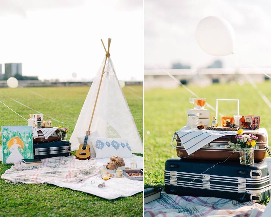 PICNIC THEMED MARRIAGE PROPOSAL
