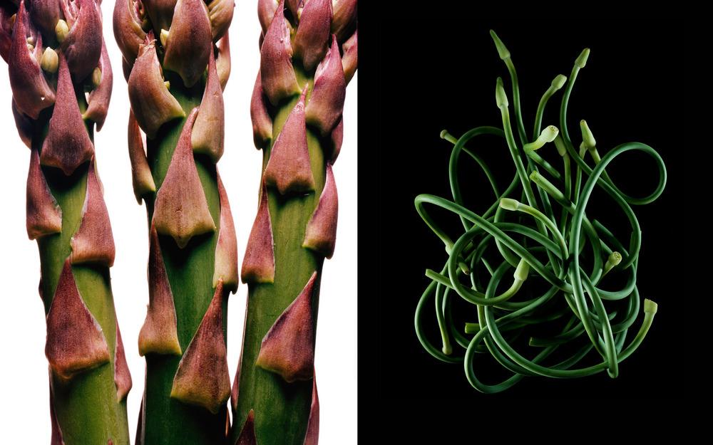 PR_asparagus-beans_sq.jpg