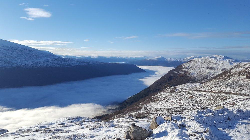 Bomull på Nordfjorden.