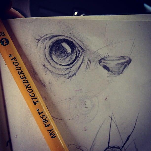instagram-digest-20120914-1.jpg