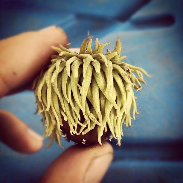 instagram-digest-20120914-10.jpg
