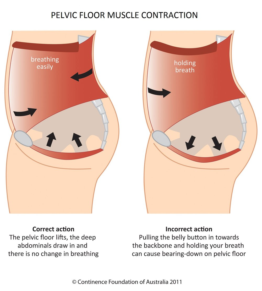 Pelvic-Floor-In39s-Outs-GFit.jpg