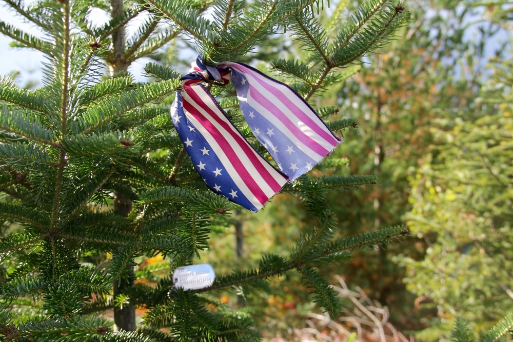 "You can request Wreaths Across America make a replica dog tag and choose your family tree to ""tag."""