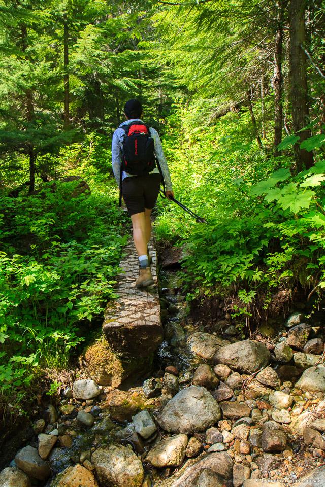 Crossing a small stream