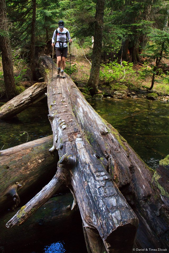 Log bridge across Cold Creek, on the east side of Twin Lakes