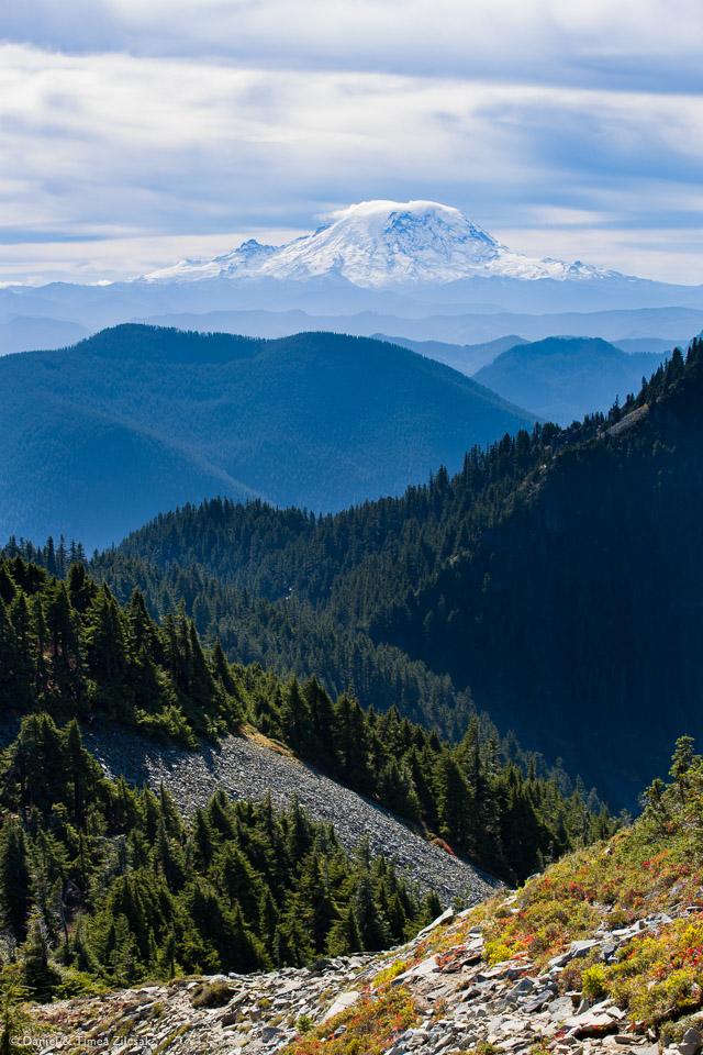Mount Rainier seen from Silver Peak