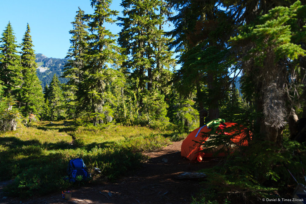 Lower Bridge Creek Camp, Backpacking the High Divide - Seven Lakes Basin Loop, Olympic National Park