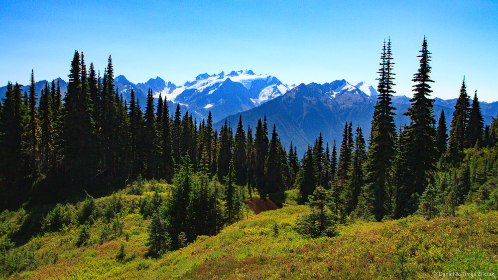 View of Mount Olympus from the High Divide Trail, Olympic National Park
