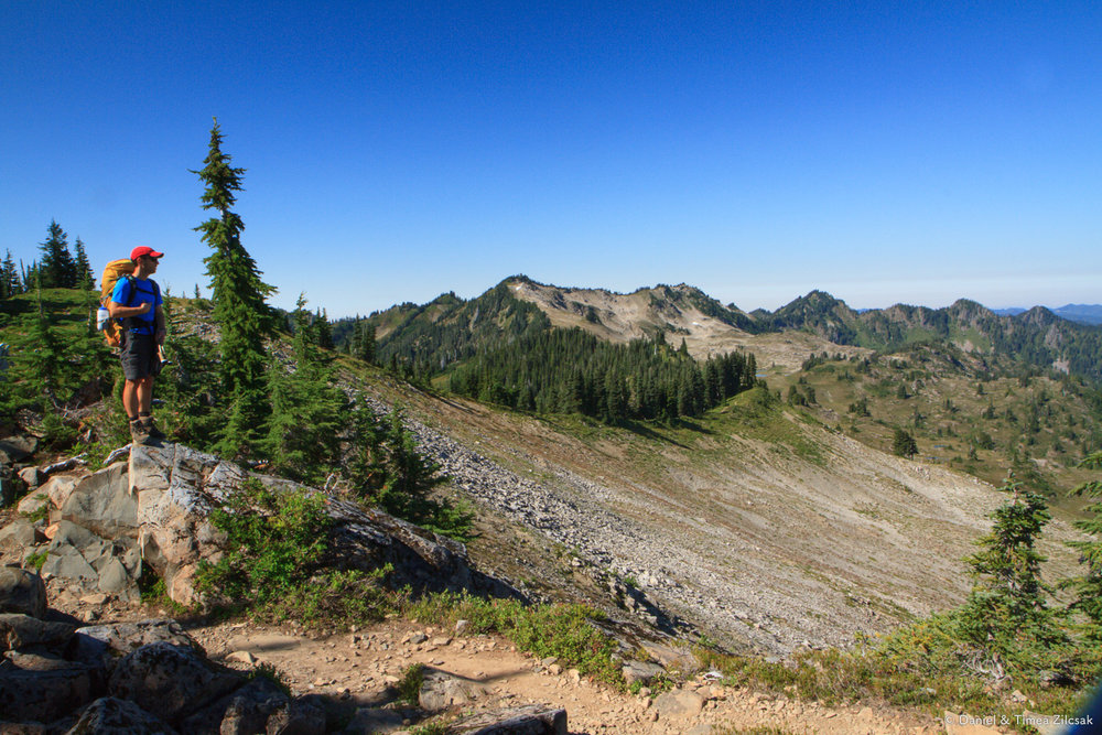 Looking west on High Divide Trail, Olympic National Park