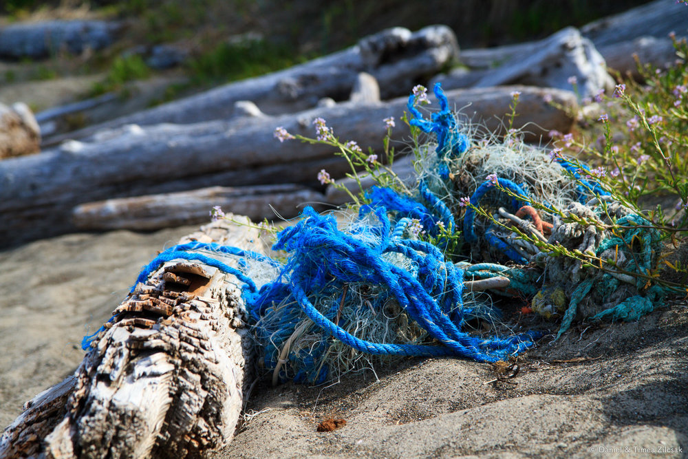 Fishing net debris near Toleak Point, South Coast Wilderness Trail