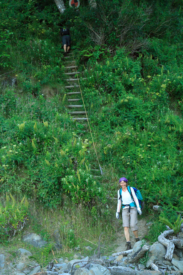 Ladder descending into Jefferson Cove, South Coast Wilderness Trail