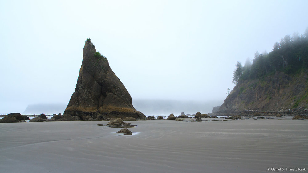 South Coast Wilderness Trail, Olympic National Park