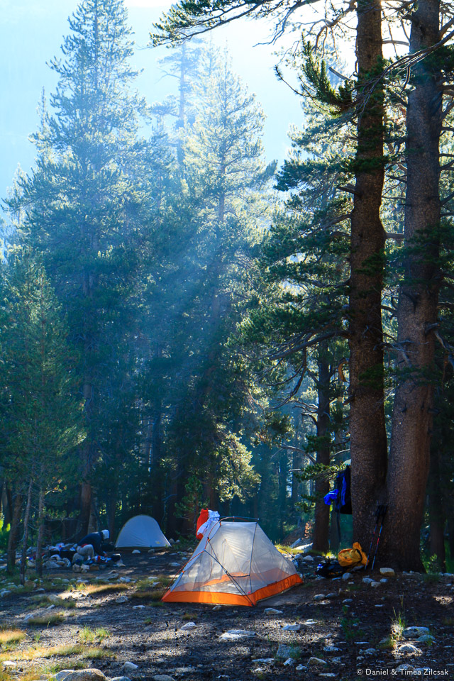 Our camp at Ireland Creek near Lyell Canyon, Yosemite National Park