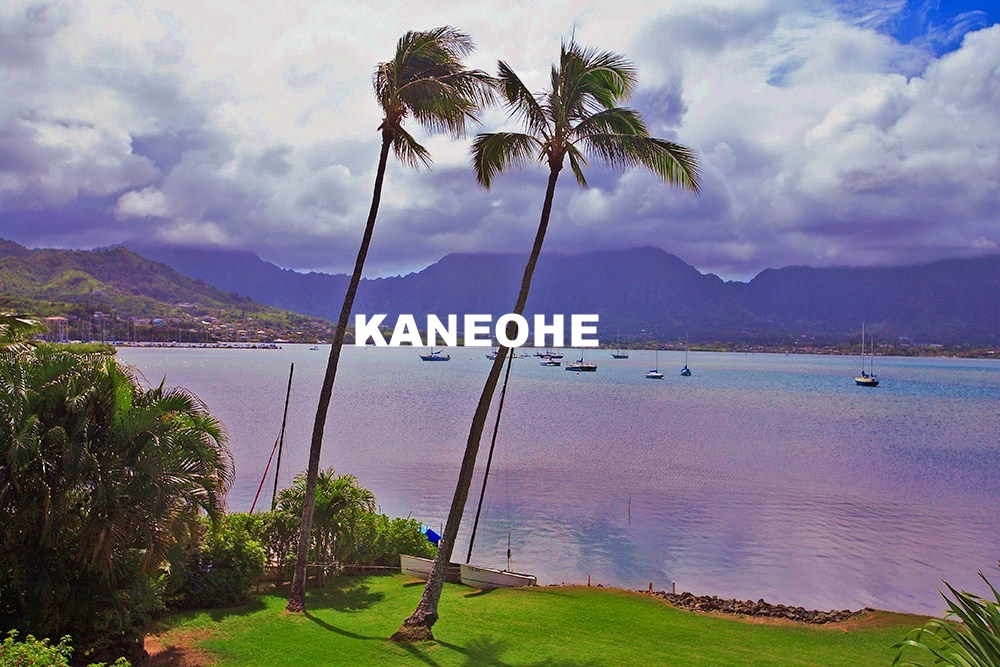 KANEOHE REAL ESTATE
