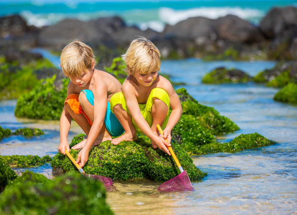 oahu kids activities