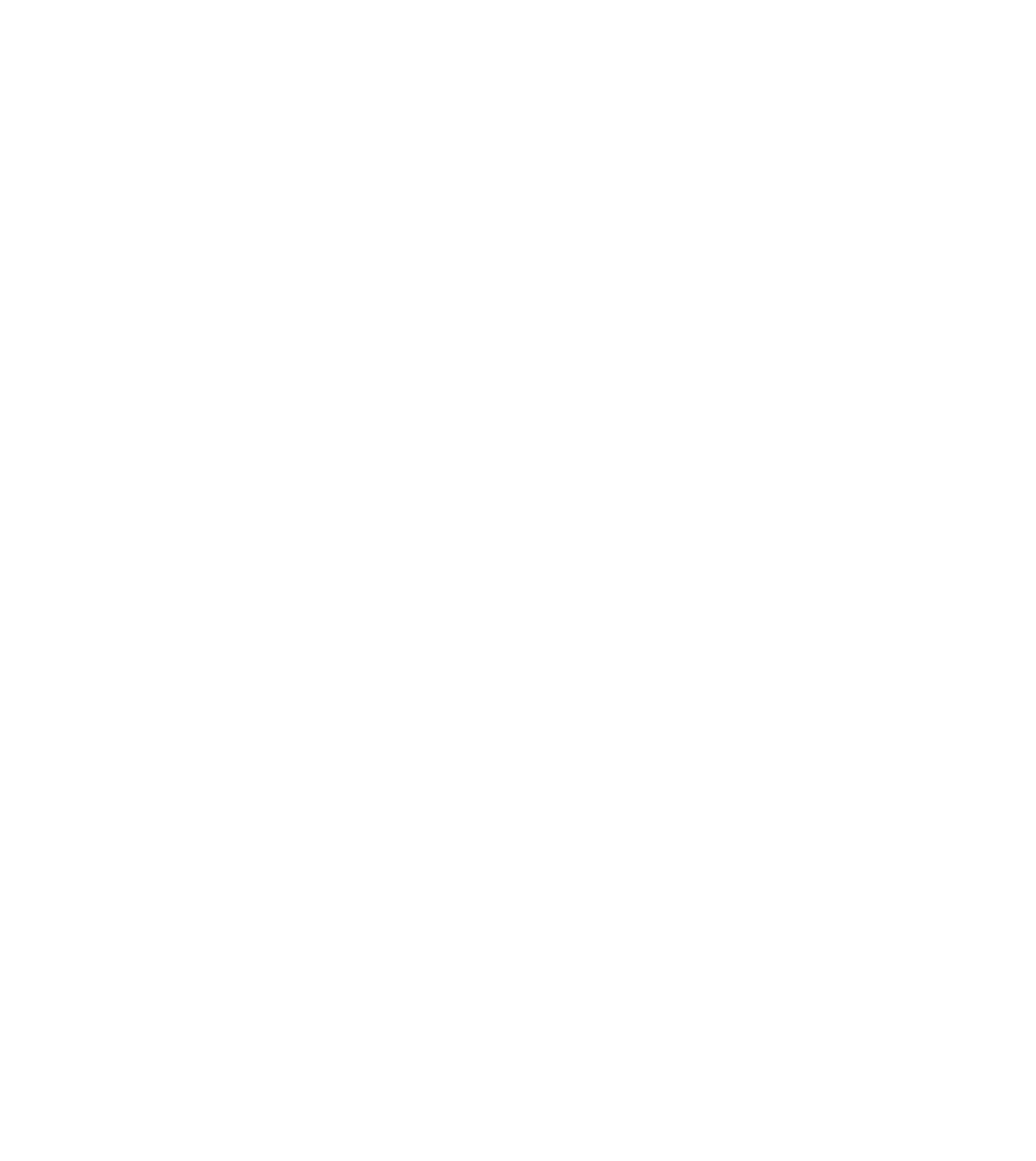Niro Law Group