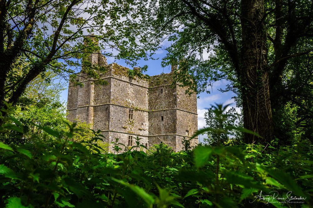 Ightermurragh Castle near County Cork, Ireland