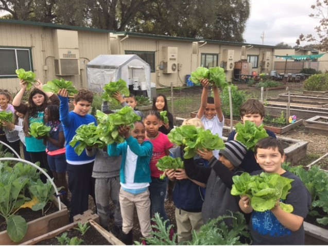 Kids with lettuce - WestmoreOaks.jpg