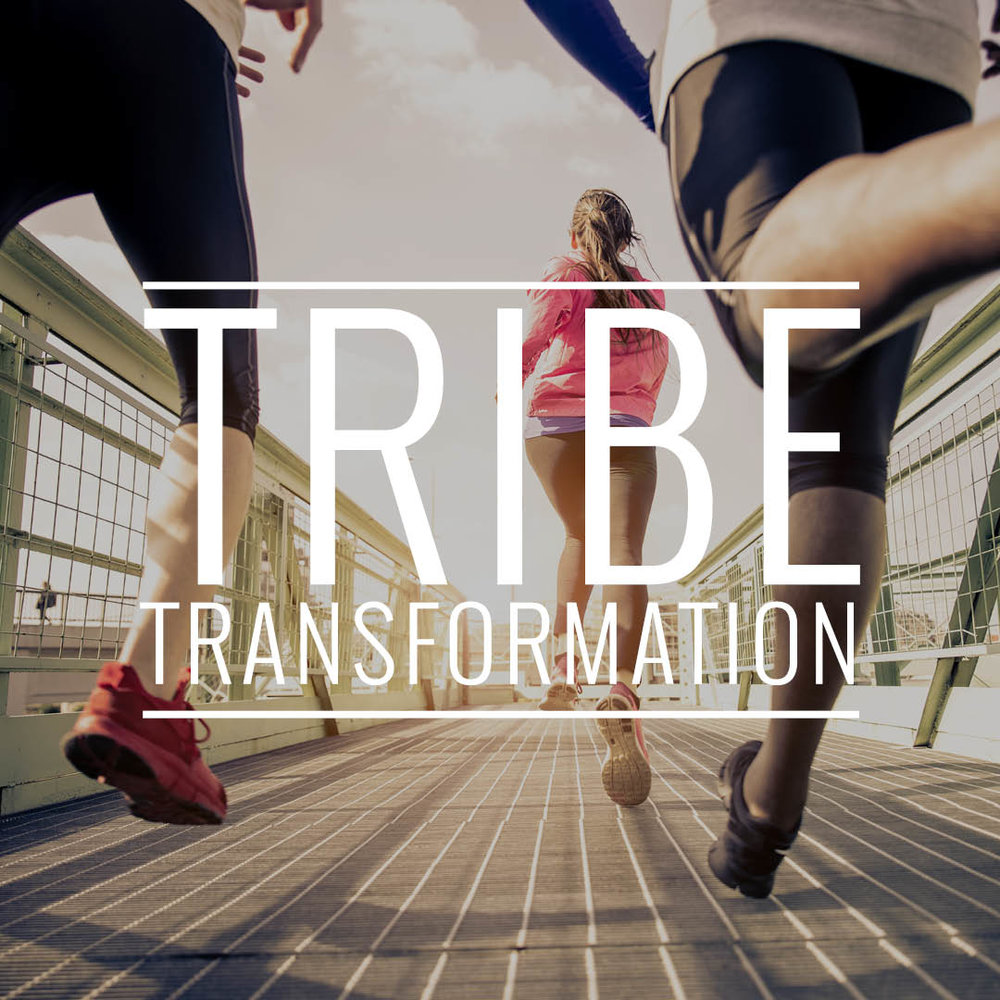 Are You Ready To Be Part of TRIBE TRANSFORMATION?