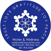 water wellness logo.jpg