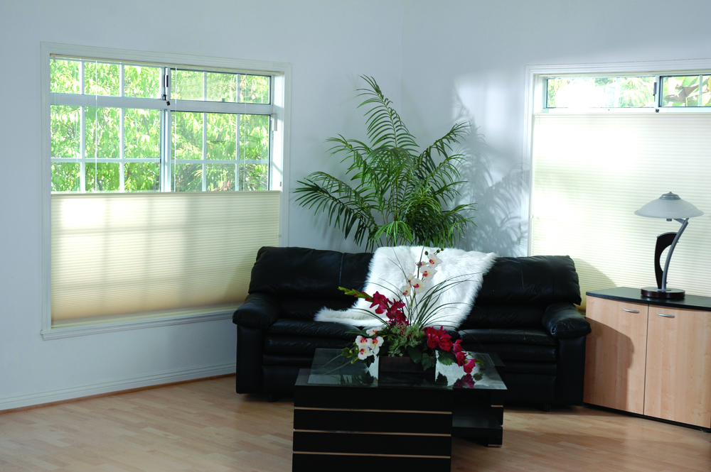 color enchantments honeycomb shades-2.jpg