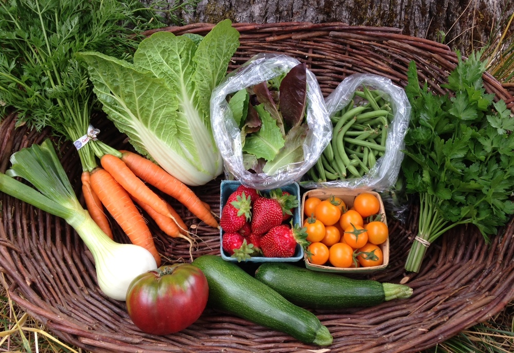 Strawberries, Heirloom & Sungold Tomatoes, Green Beans, Salad Mix,Napa Cabbage, Carrots, Onion, Parsley & Zucchini