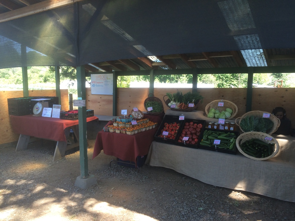 Farmstand looking filled out on a casual Friday afternoon