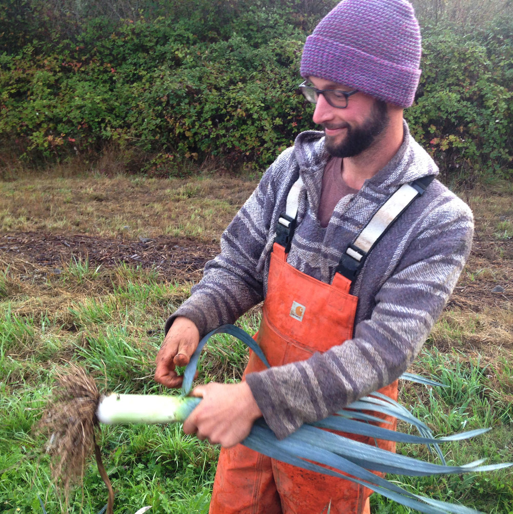 Brandon processes leeks in the field.