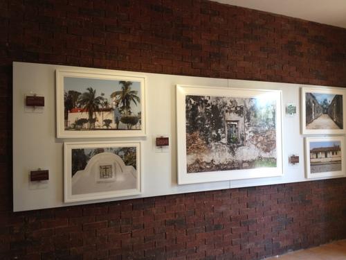ADEL BUZALI. Antigua Veracruz, lugar de raíces profundas