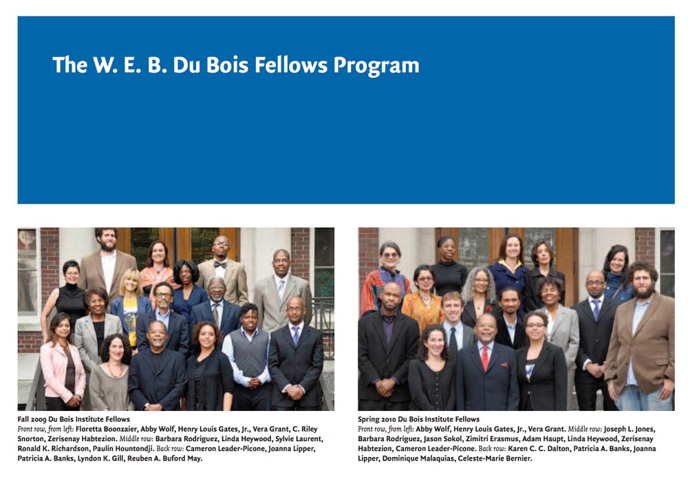 W.E.B. Du Bois Fellows, Harvard University