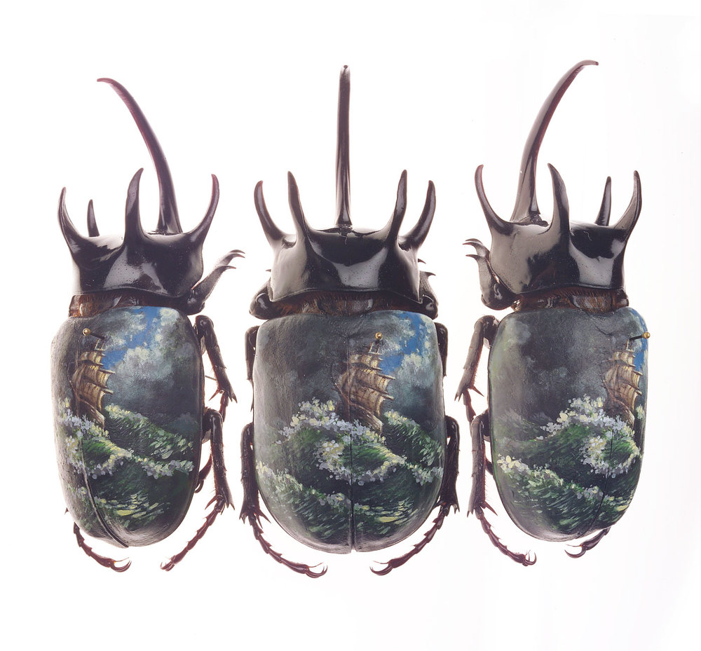 "Christopher Brand.  High Seas . 2005 - acrylic on beetle, 3"" x 1.5""."