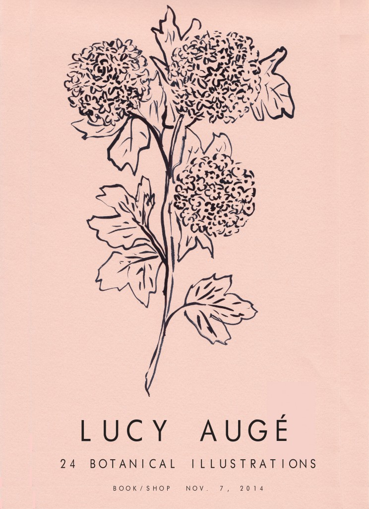 lucy auge