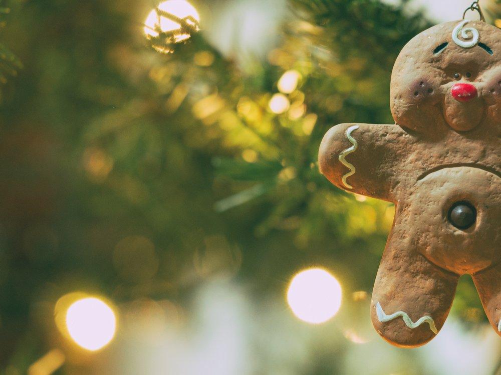gingerbread man - aaron-burden-161807-unsplash.jpg