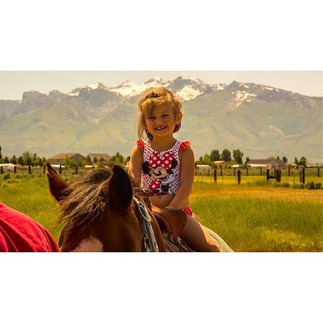 Just horsin' around. . . . #photography #travel #traveler #travelphotography #filmmaking #filmmaker #portraitphotography #portrait #nevada #travelnevada #horse #mountains #rubymountains #sony #sonyalpha #adventure #adventurephotography #cute
