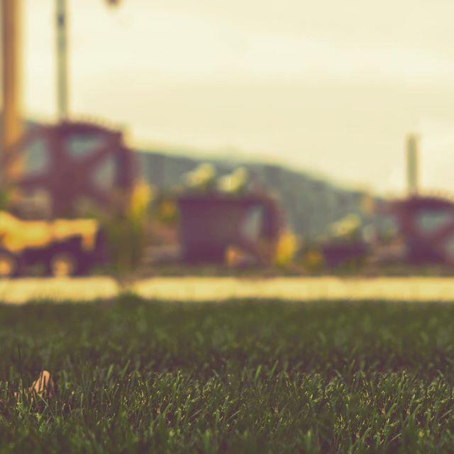 (1/3) / /  see the whole image on my profile / / . . . #filmmaking #filmmaker #photography #photographer #travel #baby #babyportrait #cute #travelphotography #camera #sony #sonyalpha #thinkverylittle #adventure #somewheremagazine #ig_shotz #instagood #photooftheday #love #jesus #cinematography #birthday