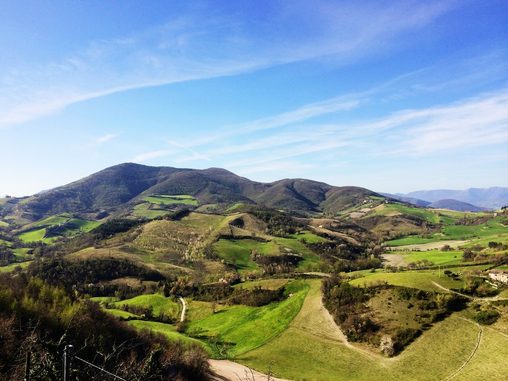 Rolling hills of Marche